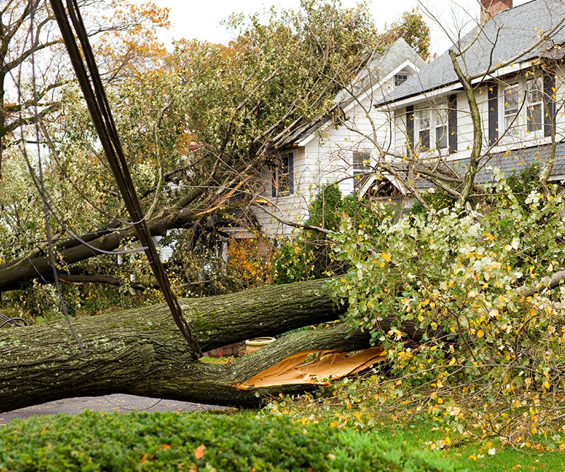 dte energy   damages & claims