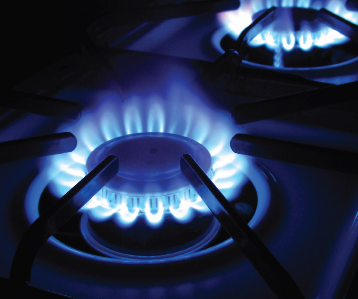 Compare Natural Gas Costs